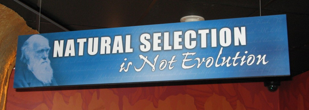 Animal Color And Natural Selection