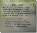 One Flesh - Doctrine of Marriage