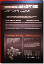 Common Misconceptions About Natural Selection