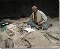 Creationist Paleontologist