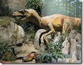 Carniverous Velociraptor