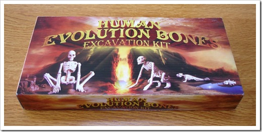 Human Evolution Bones Excavation Kit